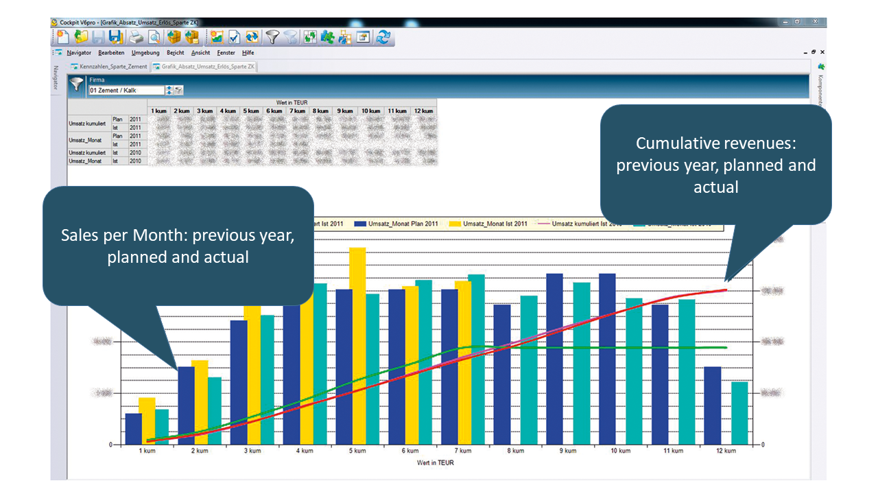 Cubeware sample image financial controlling & accounting - screenshot of Rohrdorfer