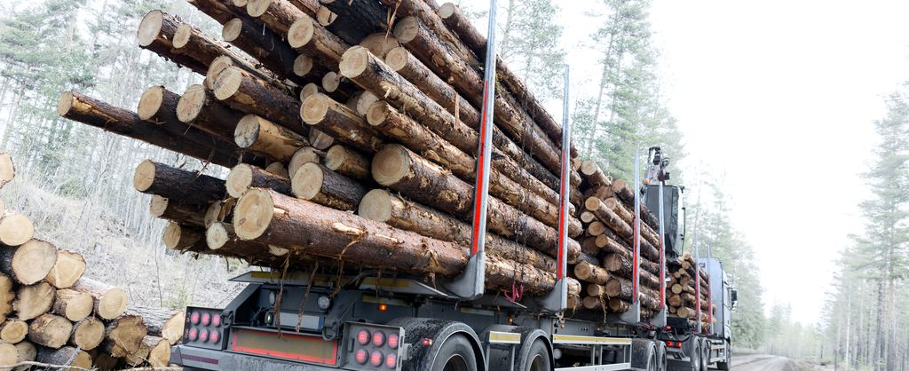Background image - industry solution agriculture & forestry - truck with wood charge